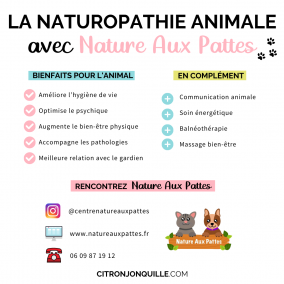 La naturopathie animale